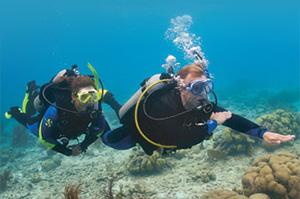 Curso Advanced Open Water Diver ¡Continúa la Aventura!