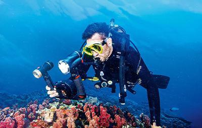 Continuar buceando, fotografía digital subacuática (2)