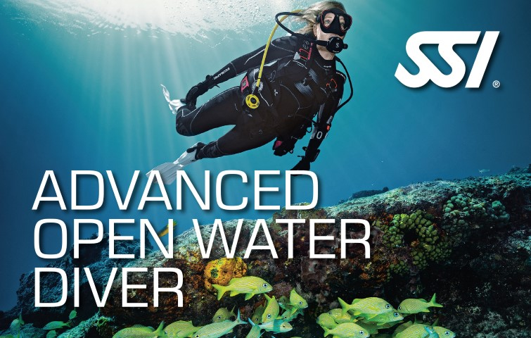 Advanced Open Water Diver: Nitrox / Profundo / Navegación / Traje Seco