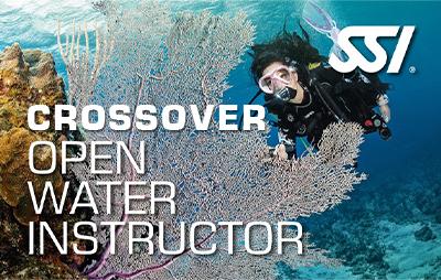 CrossOver para Instructor online