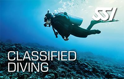 Open Water Diver para discapacitados