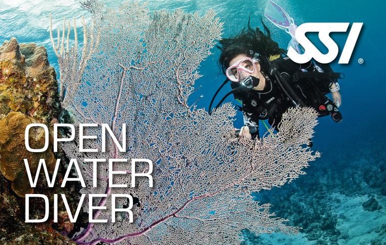 Actualización Scuba Diver a Open Water Diver